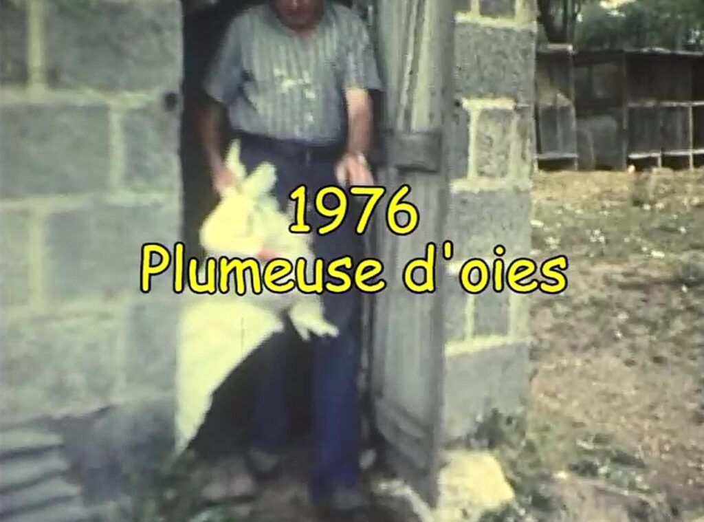 La plumeuse d'oie