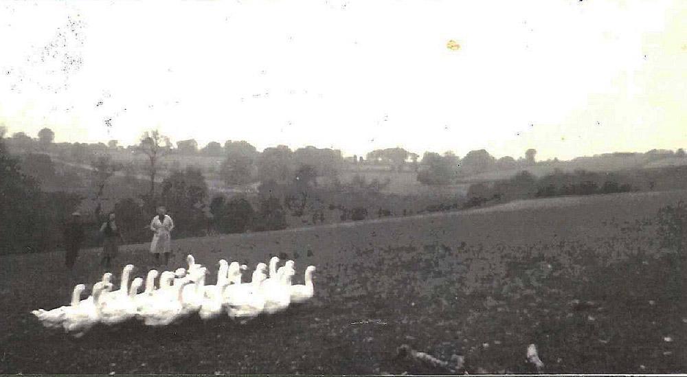 La Pillaudière - La Chapelle Bertrand - 1940