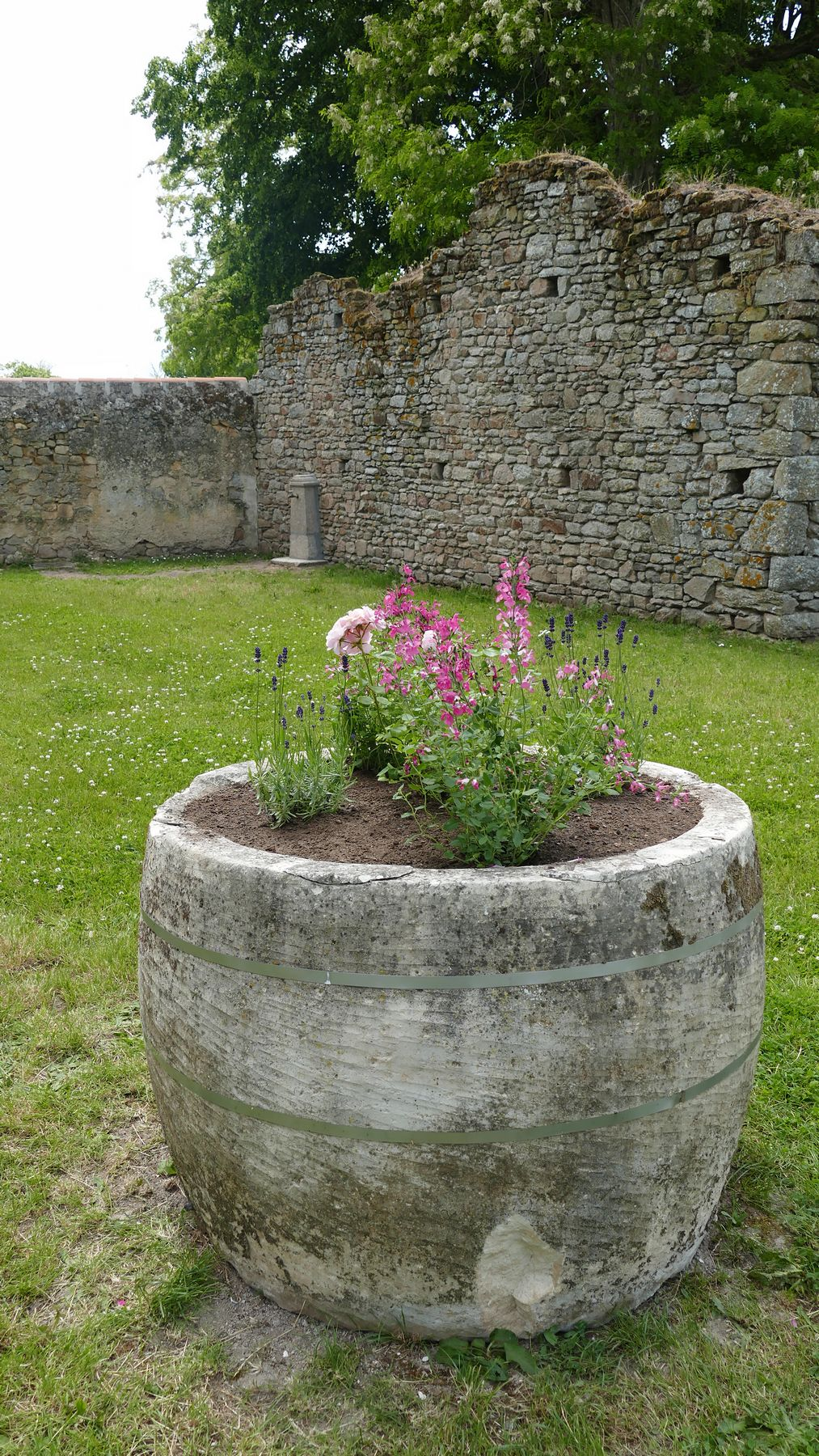 Jardin presbytère - Capella Bertrandi